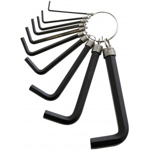 Amtech 10pc Hex Key Set & Keyring