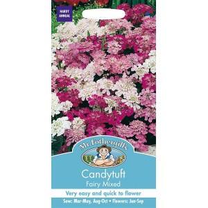 Mr.Fothergill's Candytuft Fairy Mixed Flower Seeds