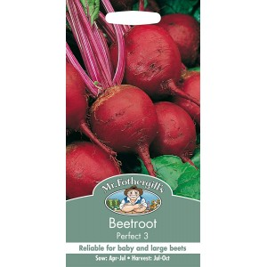 Mr.Fothergill's Beetroot Perfect 3 Seeds
