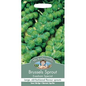 Mr.Fothergill's Brussels Sprout Evesham Special Seeds