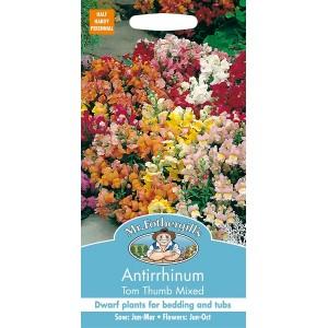 Mr.Fothergill's Antirrhinum Tom Thumb Mixed Flower Seeds