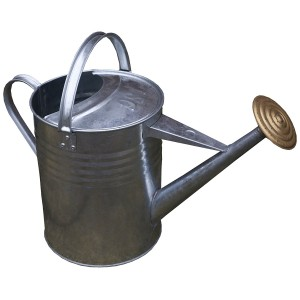 Apollo Watering Can