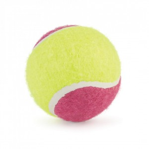 Ancol Tennis Balls Assorted Colours