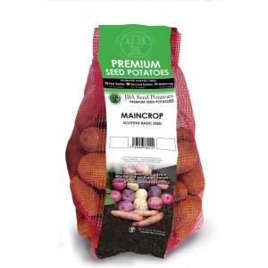 JBA Valor Seed Potatoes 2kg