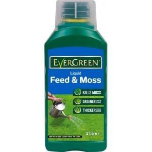 EverGreen Liquid Feed & Moss