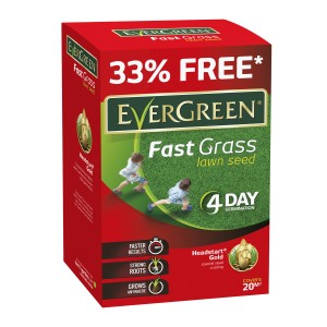 EverGreen Fast Grass Lawn Seed