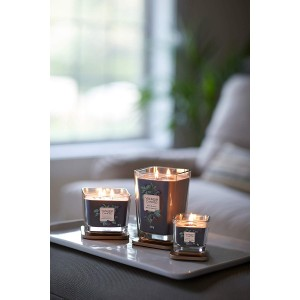 Yankee Scented Candles Elevation Collection Dark Berries